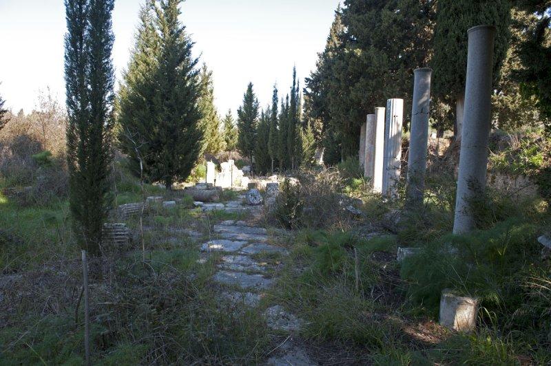 Ephesus March 2011 3517.jpg