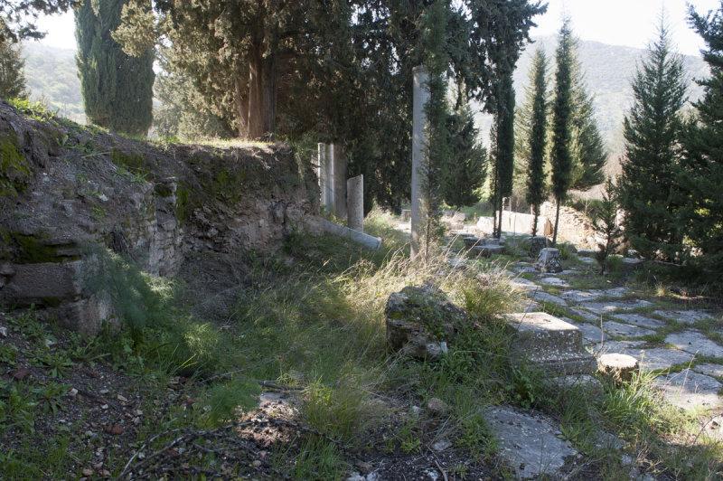 Ephesus March 2011 3523.jpg