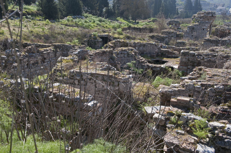 Ephesus March 2011 3531.jpg