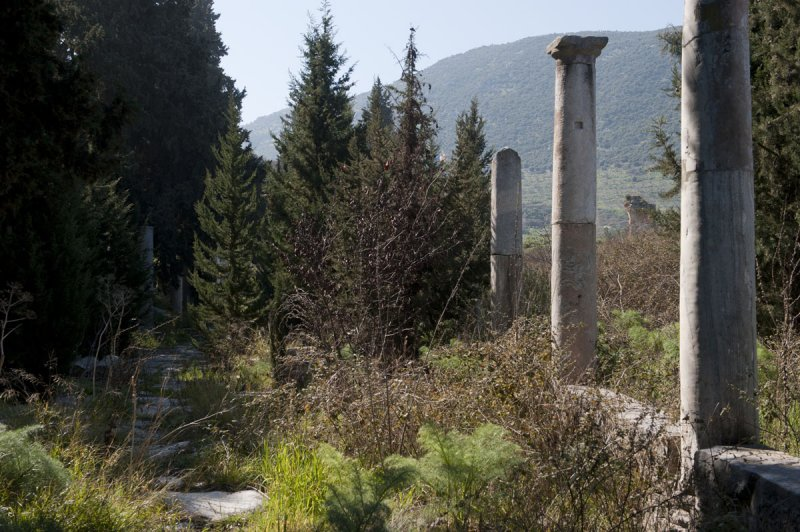 Ephesus March 2011 3539.jpg