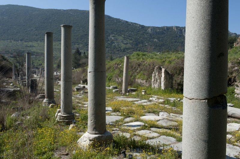 Ephesus March 2011 3540.jpg