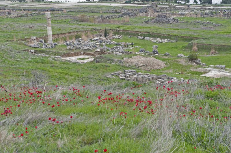 Hierapolis March 2011 4985.jpg