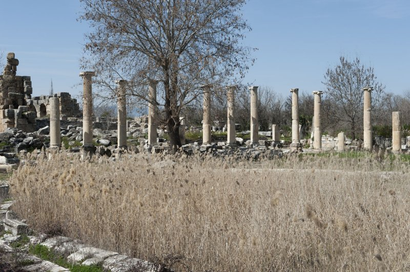 Aphrodisias March 2011 4456.jpg