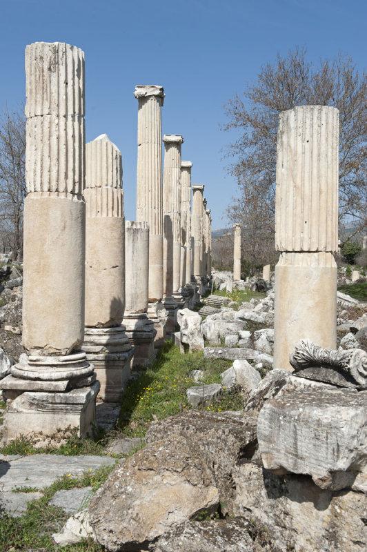 Aphrodisias March 2011 4463.jpg