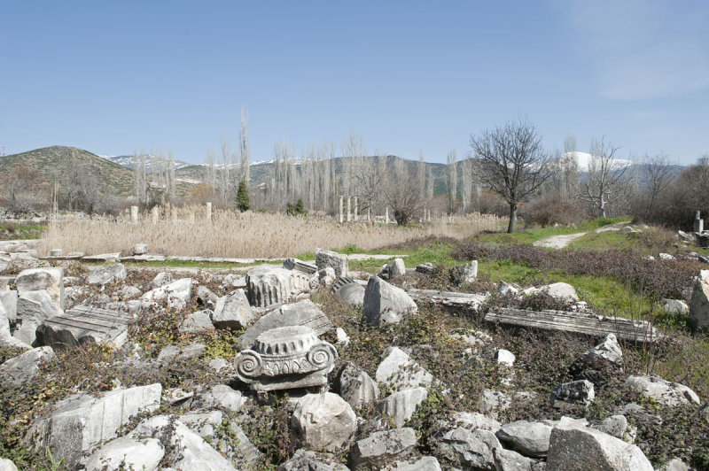 Aphrodisias March 2011 4468.jpg