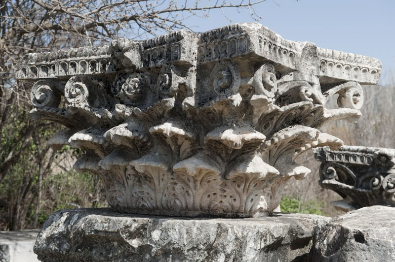 Aphrodisias March 2011 4484.jpg