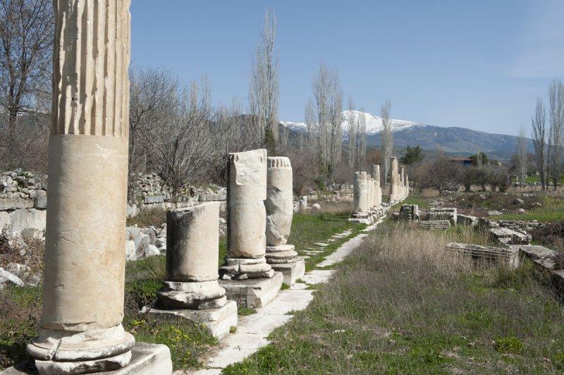 Aphrodisias March 2011 4490.jpg