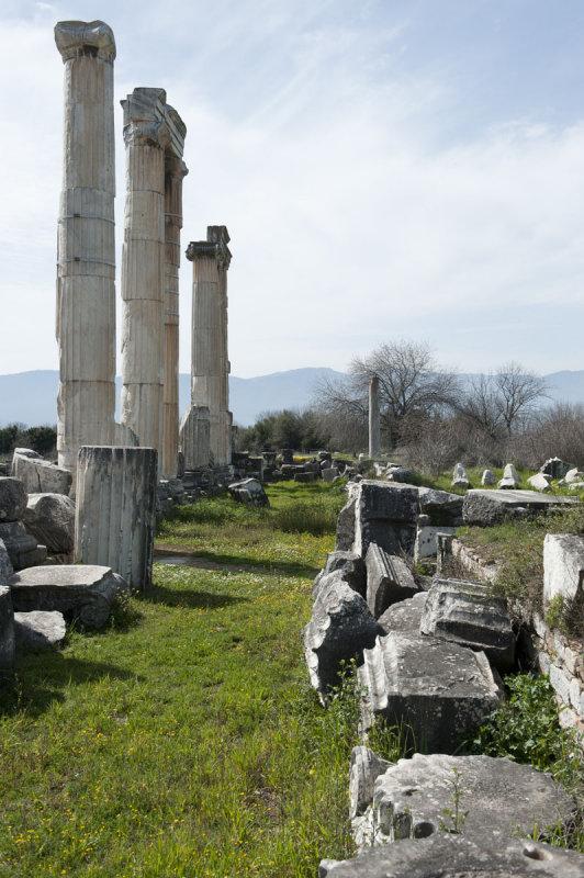 Aphrodisias March 2011 4542.jpg