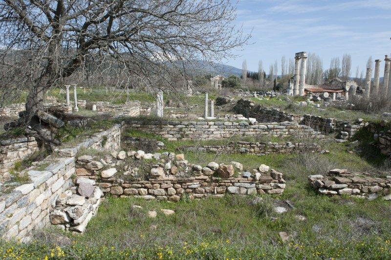 Aphrodisias March 2011 4551.jpg