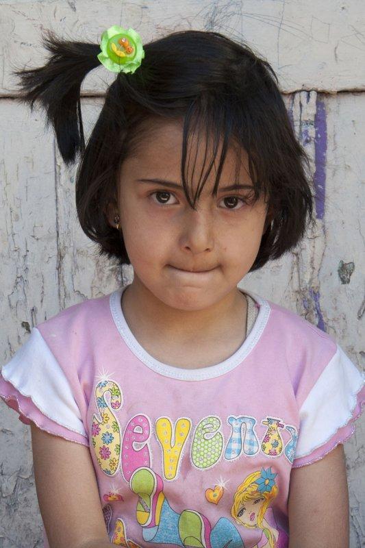 Erzurum june 2011 8712b.jpg