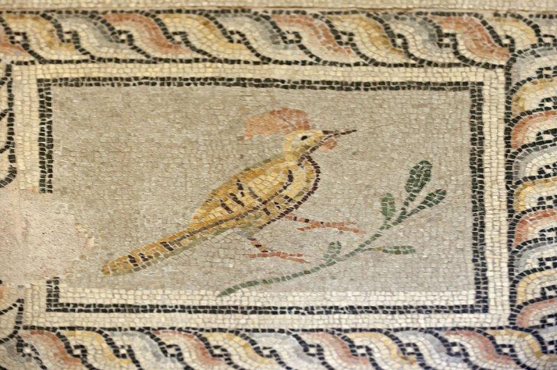 Gaziantep Zeugma Museum December 2011 2038.jpg
