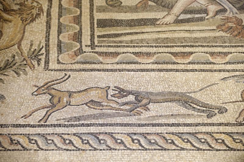 Gaziantep Zeugma Museum December 2011 2062.jpg