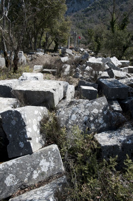 Termessos march 2012 3565.jpg