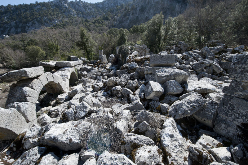 Termessos march 2012 3578.jpg