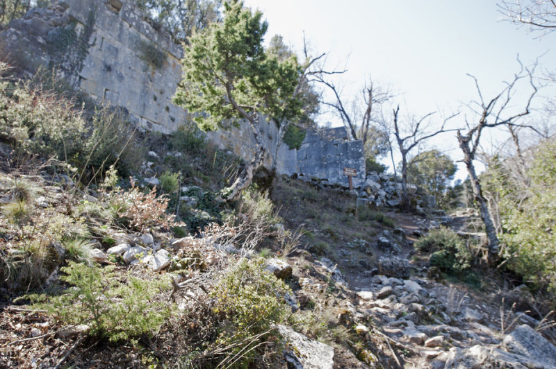 Termessos march 2012 3584.jpg