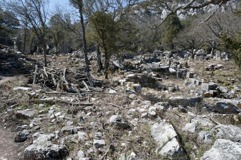 Termessos march 2012 3618.jpg