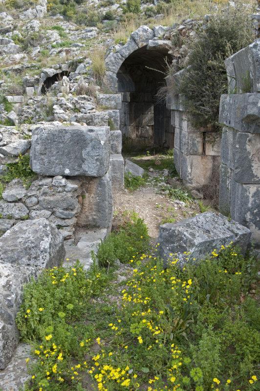 Limyra march 2012 5101.jpg