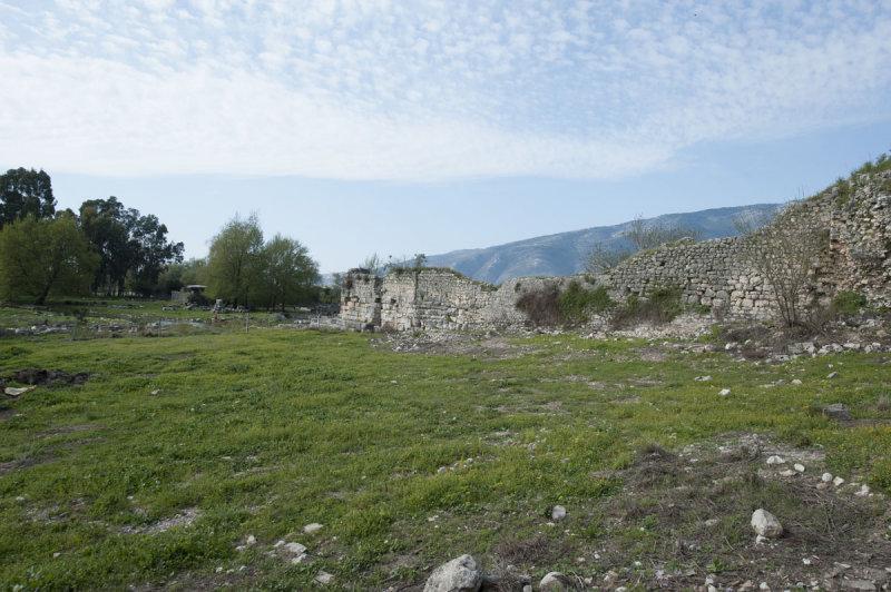 Limyra march 2012 5115.jpg