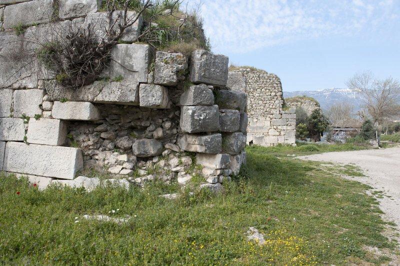 Limyra march 2012 5119.jpg