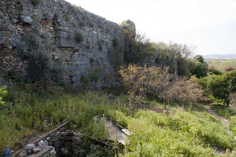 Limyra march 2012 5120.jpg