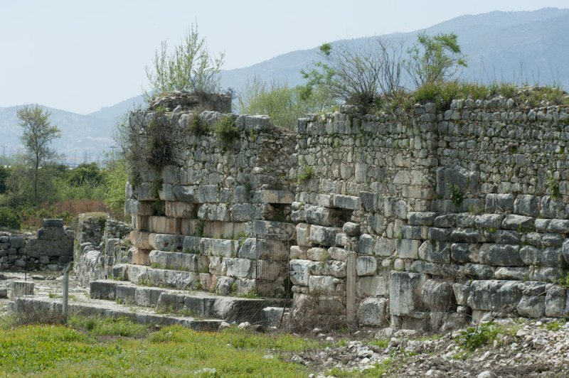 Limyra march 2012 5156.jpg