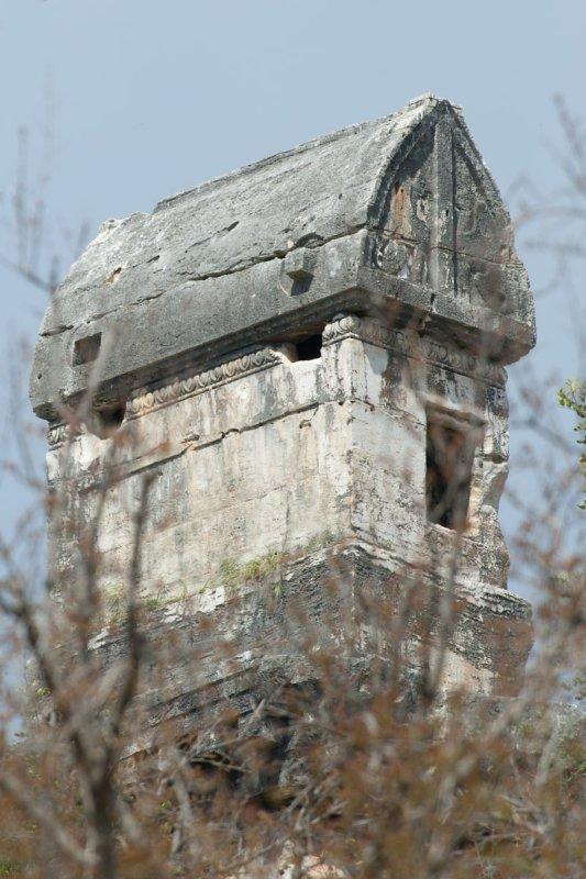 Limyra march 2012 5161.jpg
