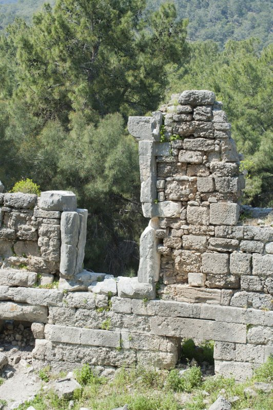 Phaselis march 2012 5346.jpg