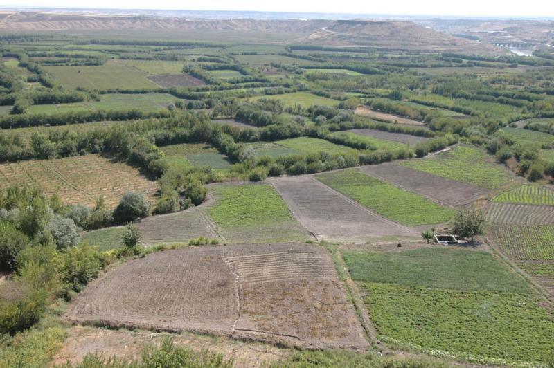 Diyarbakir surrounding country 3071