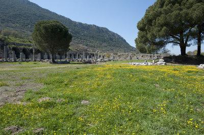 Ephesus March 2011 3625.jpg