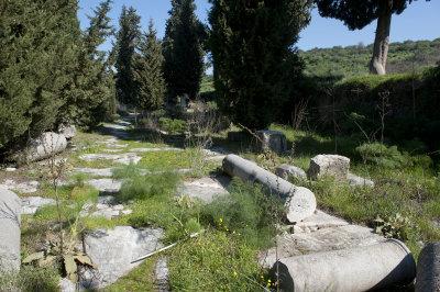 Ephesus March 2011 3525.jpg