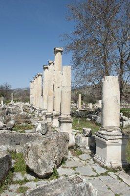 Aphrodisias March 2011 4476.jpg