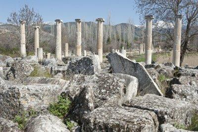 Aphrodisias March 2011 4482.jpg