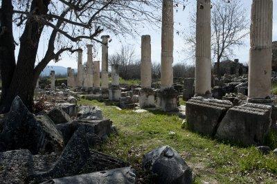 Aphrodisias March 2011 4492.jpg