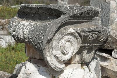 Aphrodisias March 2011 4540.jpg