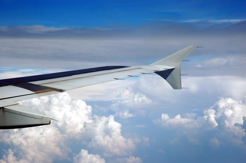 Airbus in Flight