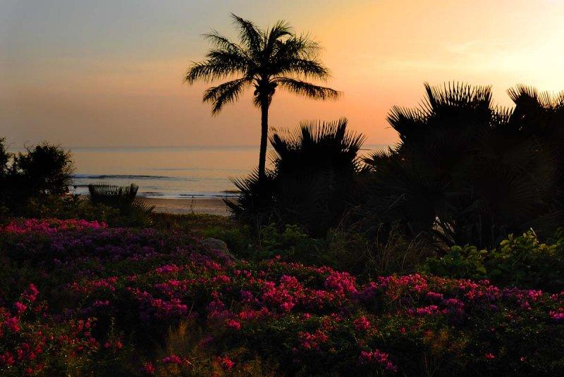 plage du Sénégal