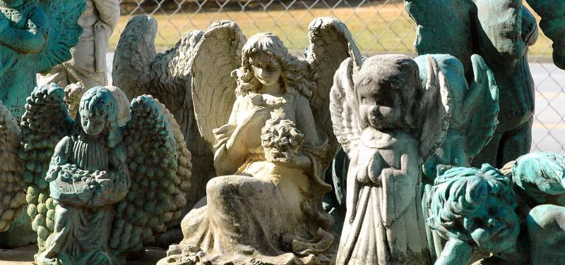 angels all2.jpg