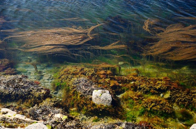 underseascape 2