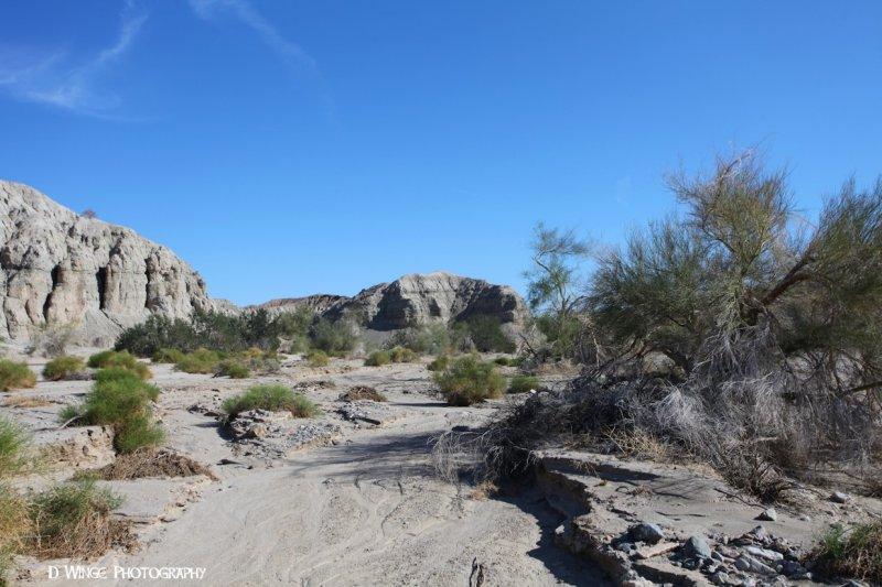 IMG_5745 (Box Canyon)