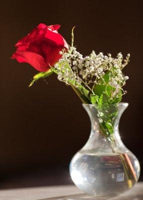 Leahs Rose