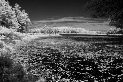Witch Hole Pond #2