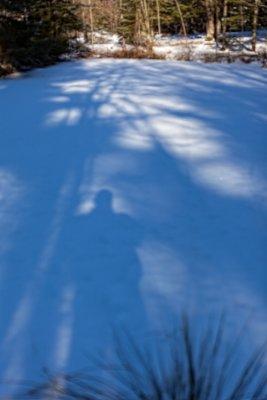 Shadows on Snow on Small Pond