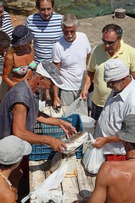 Fish market ribja tržnica_MG_0268-11.jpg