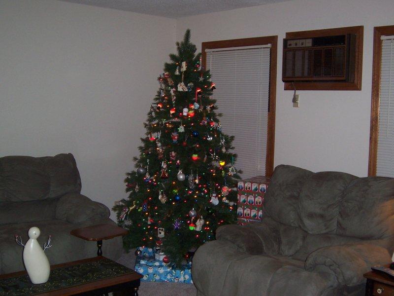Christmas 014.jpg