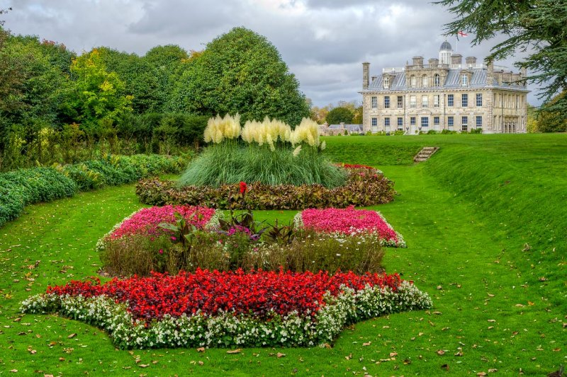 Kingston Lacy ~ flower bed and house