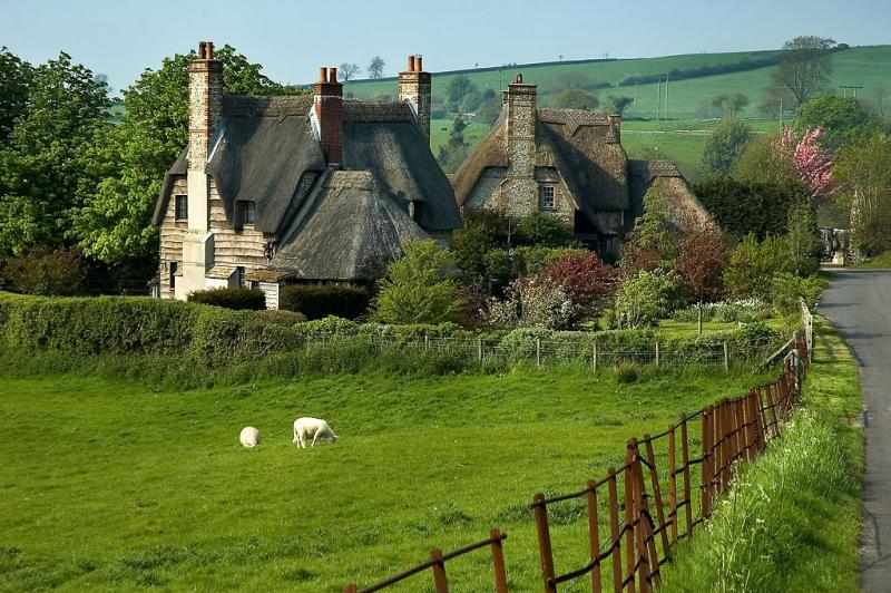 Thatched cottages, Chantmarle (2038)