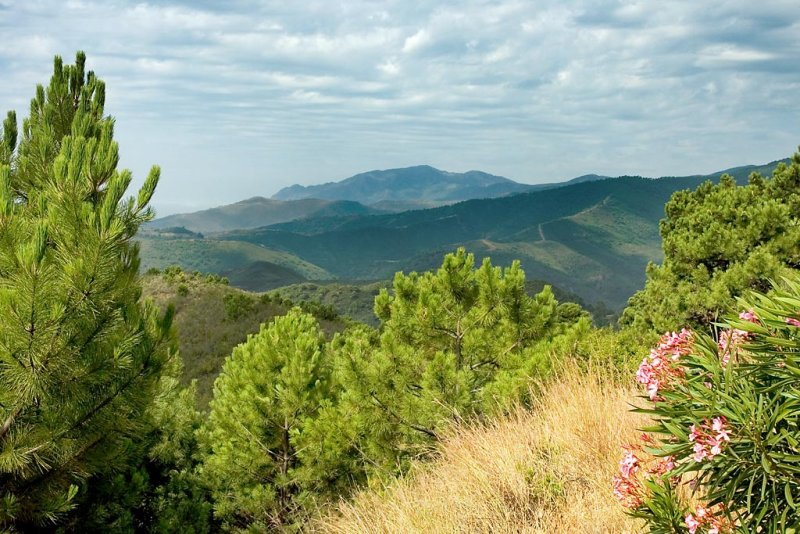 On the way to Ronda, Andalucia