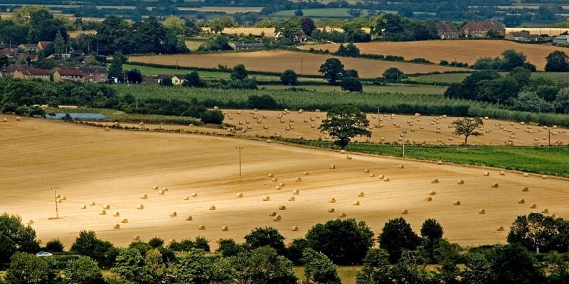 Hay bales, from Ham Hill, Somerset