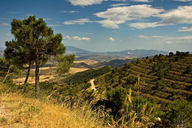 Terraced hillside, Sierra, de Aquas