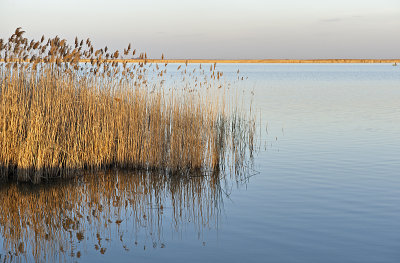 Lake Fertő (Hungary), Lake  Neusiedl (Austria)